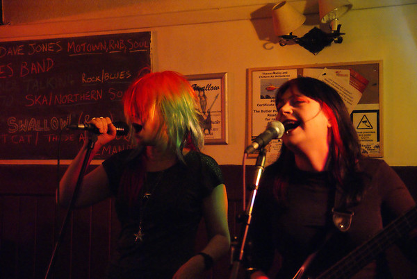 Swallow at The Butler in Reading