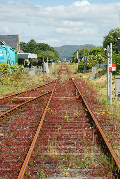 The Cambrian coast line, still closed after several months, is looking a bit sad.