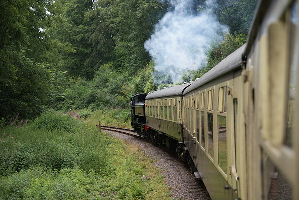 GWR Pannier 9661 heads through the Forest of Dean