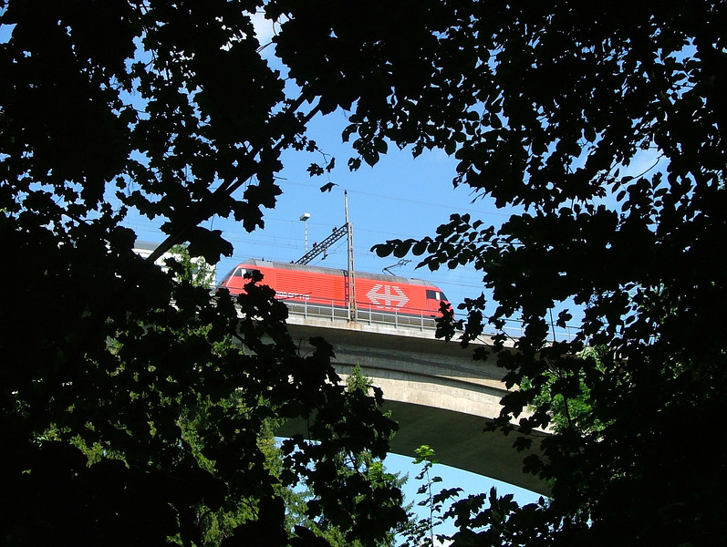 SBB Re460 crosses the Aare viaduct in Bern