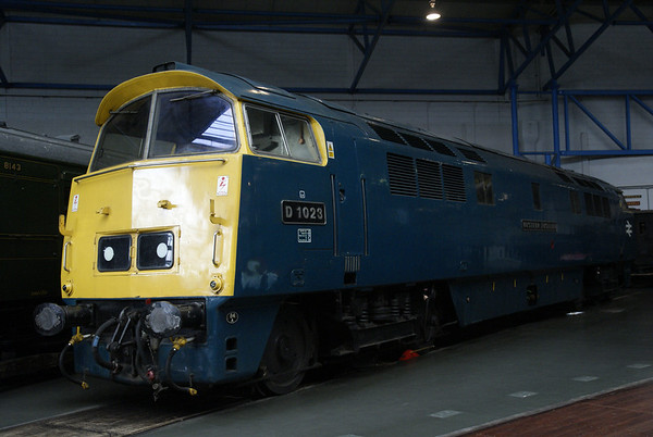 Western at the NRM
